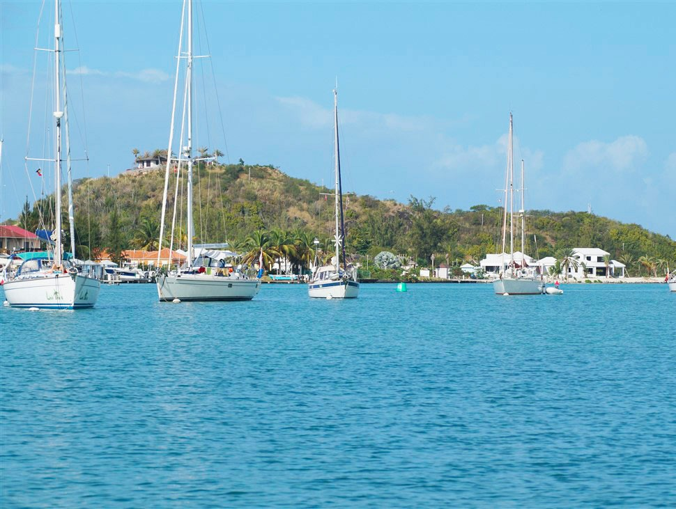 Boats moored in the harbour
